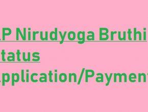 AP Nirudyoga Bhruti Status 2020 online
