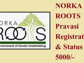 Norka Roots Registration
