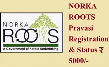 Norka Roots Registration
