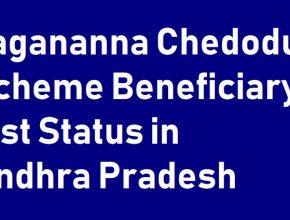 YSR Chedodu scheme list