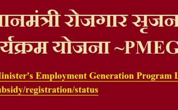 PM employment generation program